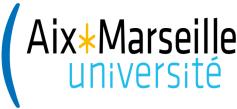 Expertise de Votes électroniques - Aix Marseille université