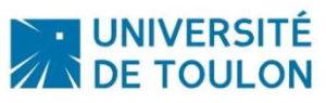 Expertise de Votes électroniques - Université de Toulon